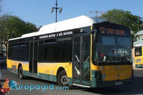 автобусы в таллин из спб: все перевозчики и условия
